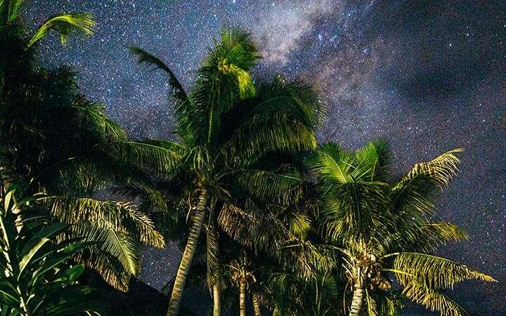 Stars Melissa Findley Vanuatu